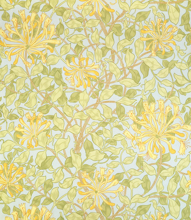 D William Morris honeysuckle