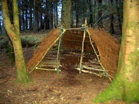 Wild Hut 14