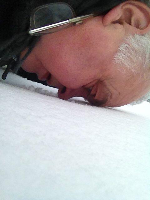 Sniffing Snow